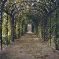 Karmel – Najpiękniejszy Ogród Świata
