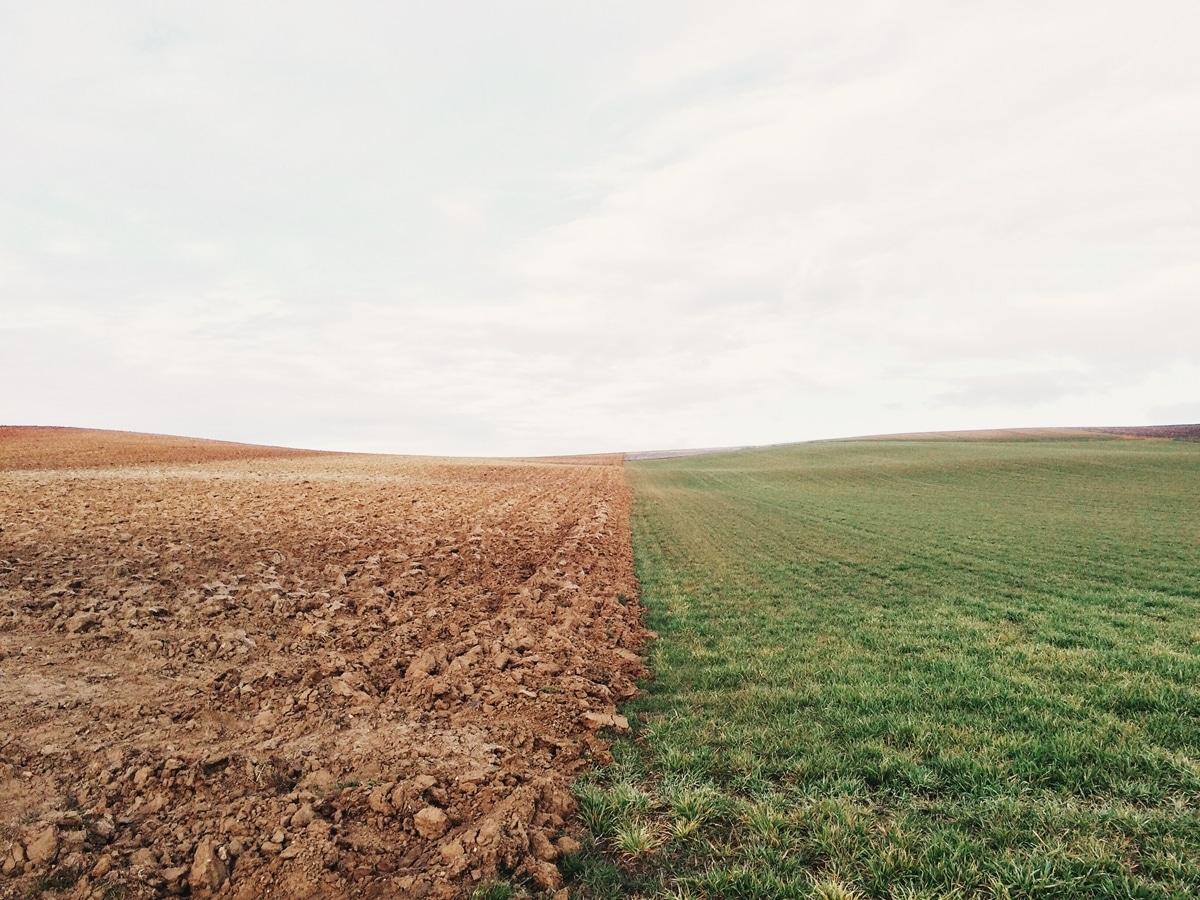 Teologia a świętość | Jedność i podział