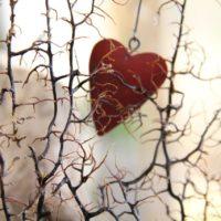 Serce, które nas zna