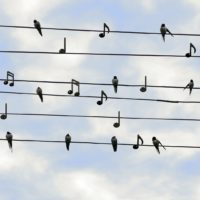 Karmelitańskie Warsztaty Liturgiczno – Muzyczne SOLO DIOS BASTA